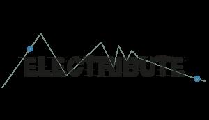Electribute Banner_website_black text_rev 6_nico6_big